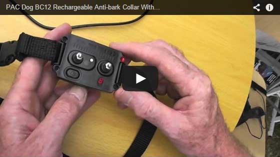 bark-collar
